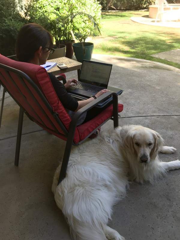 sonya on computer with dog lying next to her