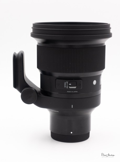 Sigma 10mm F1.4 DG HSM Art-03