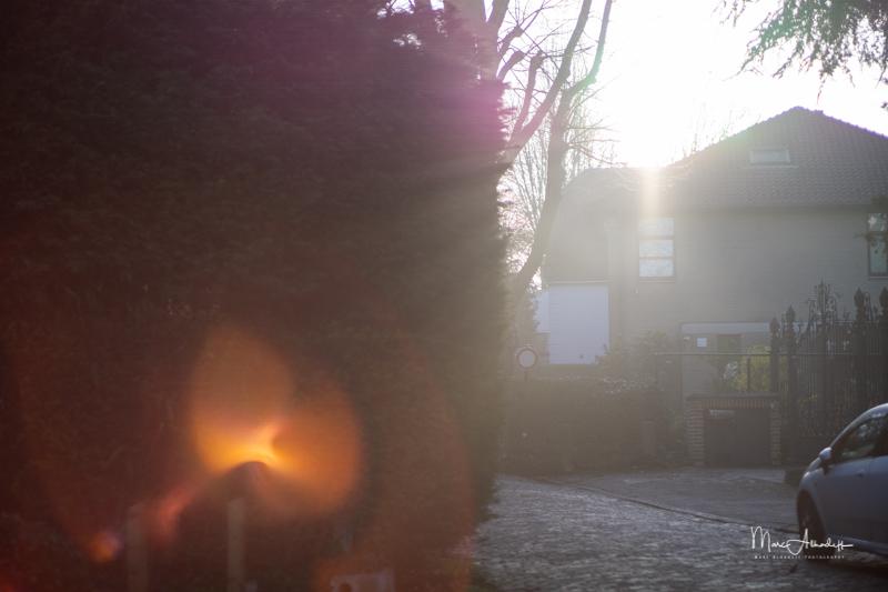 flare, Kamlan 50mm F1.1 II- ISO 100-1-3200 s 056