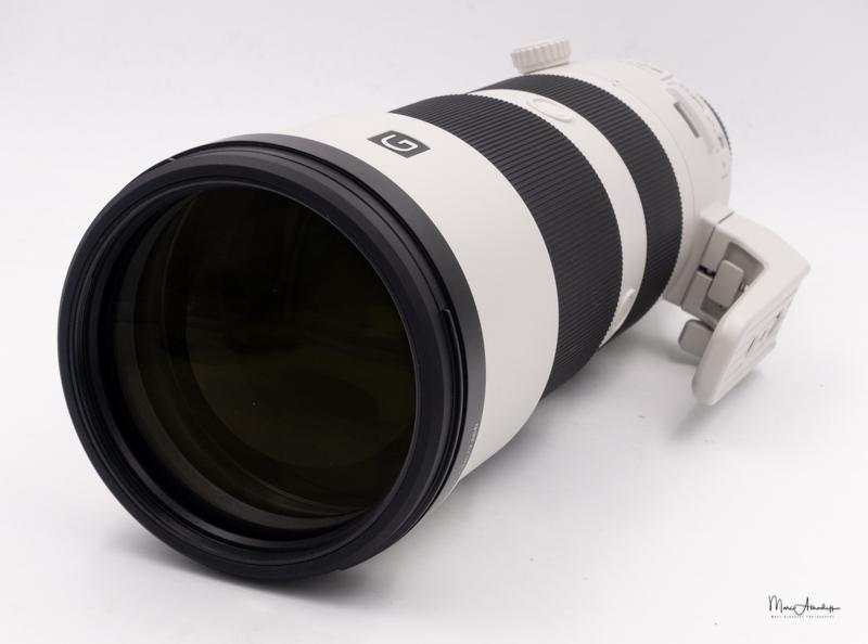 Sony FE 200-600 F5.6-6.3 G OSS-09