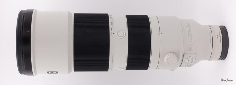 Sony FE 200-600 F5.6-6.3 G OSS-11b