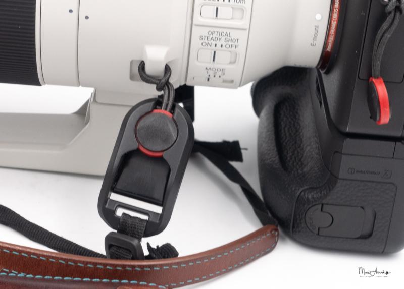 Sony FE 200-600 F5.6-6.3 G OSS-19