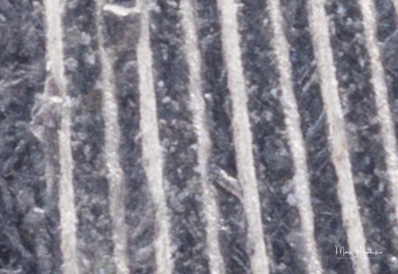 F22, Laowa 100mm F2.8 Macro- ISO 100-2,0 s 028