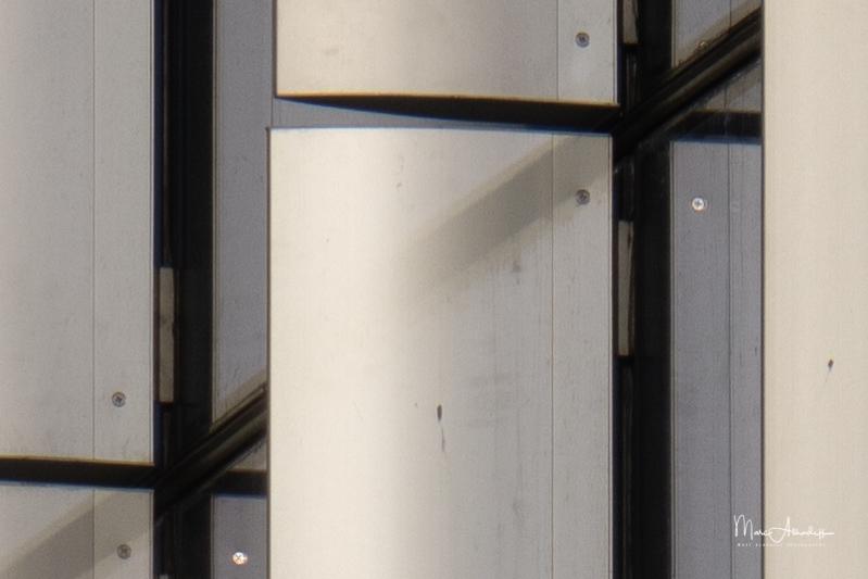 FE 600mm F4 GM OSS + 2X Teleconverter at 1200 mm - 1-1600 s à f - 8,0 à ISO 100-063-2