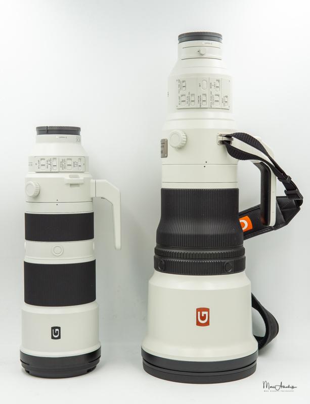 Sony FE 600 F4 GM OSS-20