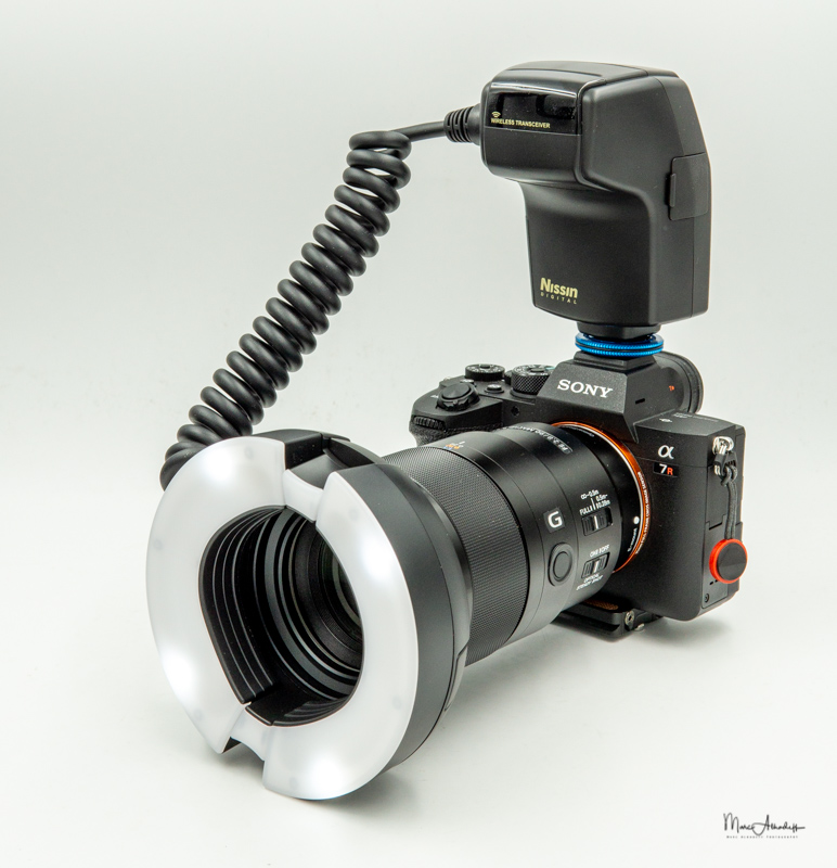 Nissin MF-18 Macro flash-13