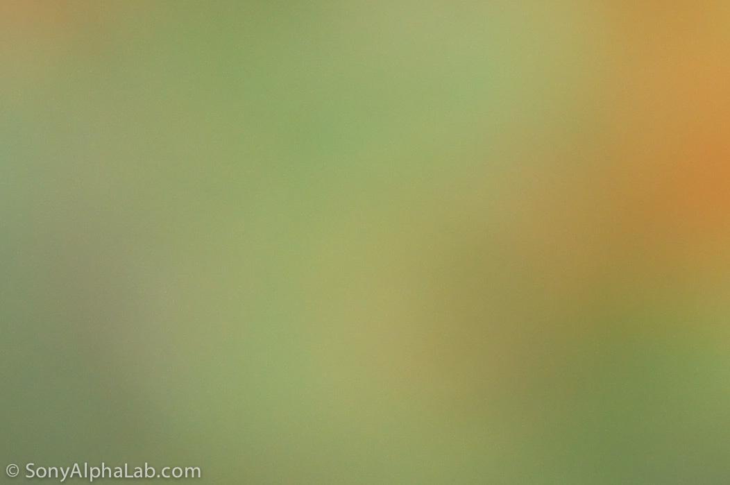 100% Crop top left corner - Sony E-Mount 18-55mm f/3.5-5.6 Lens @ f/5.6, 55mm