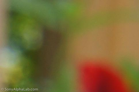 100% Crop - Sony E-Mount 18-55mm f/3.5-5.6 Lens @ f/16, 35mm