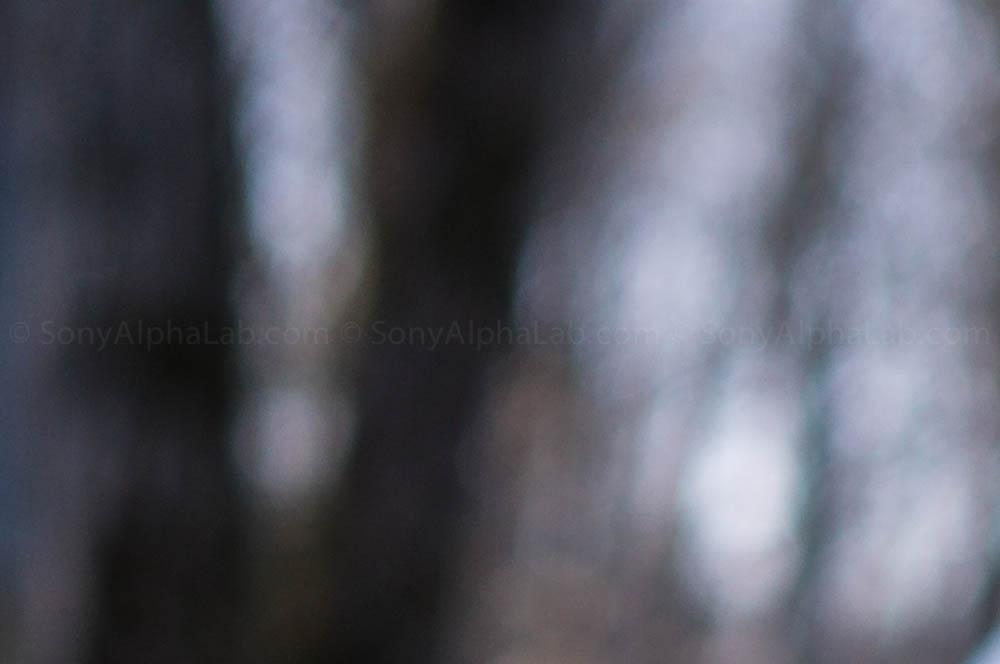 sel35f18 lens review