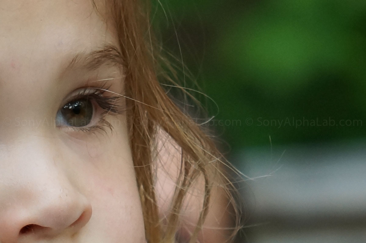 Sony Nex-3n w/ sel55210 lens @ f/5.6, 1/160sec, 96mm, ISO 640