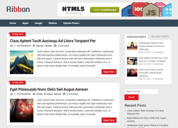 top-100-theme-wordpress-tot-nhat-13