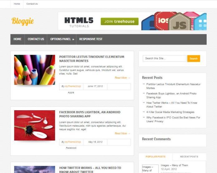 top-100-theme-wordpress-tot-nhat-19