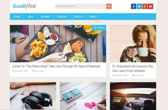 top-100-theme-wordpress-tot-nhat-9