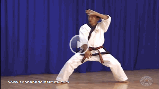 Resources archives united states soo bahk do moo duk kwan soo bahk do federation videos moo duk kwan yuk ro du moon hyung video by hc hwang fandeluxe Image collections