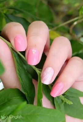 Pink feuillage-2