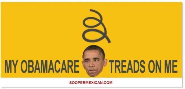 Obamacare-treads-on-me1