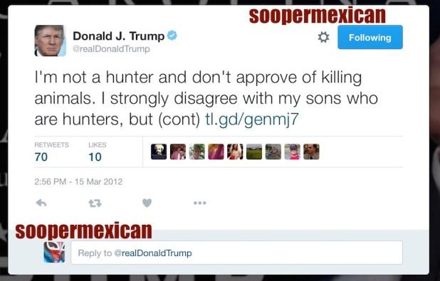 real donald trump gun tweet