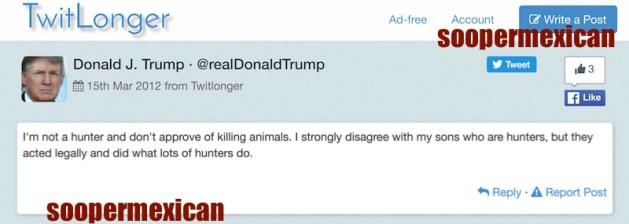 realdonaldtrump gun tweet