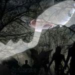 """""""Hunter"""" by Joanna Albin"""