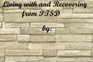 'Disorderly Life: Living with and Recovering from PTSD' by Denita Stevens