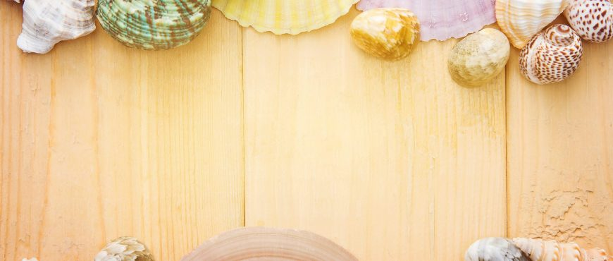art-background-board-clam-358904