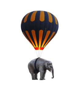 hoe-mijn-innerlijke-criticus-van-een-mug-een-olifant-maakt