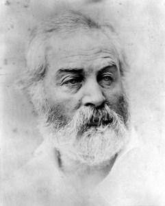 Leaves-of-grass-Walt-Whitman