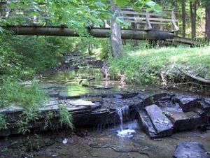Bee Lick Creek, Jefferson Memorial Forest, near Louisville, Kentucky. Public domain photo by  John Knouse, May 2005, WikiMedia.