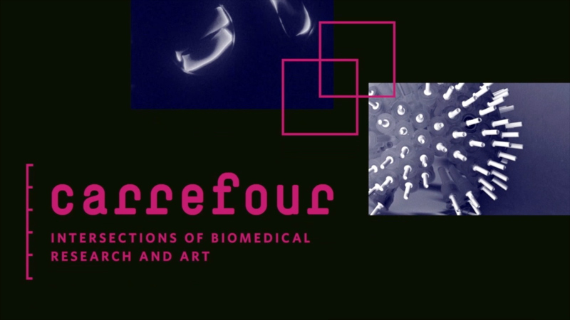 carrefour: Intersections of Biomedical Research and Art