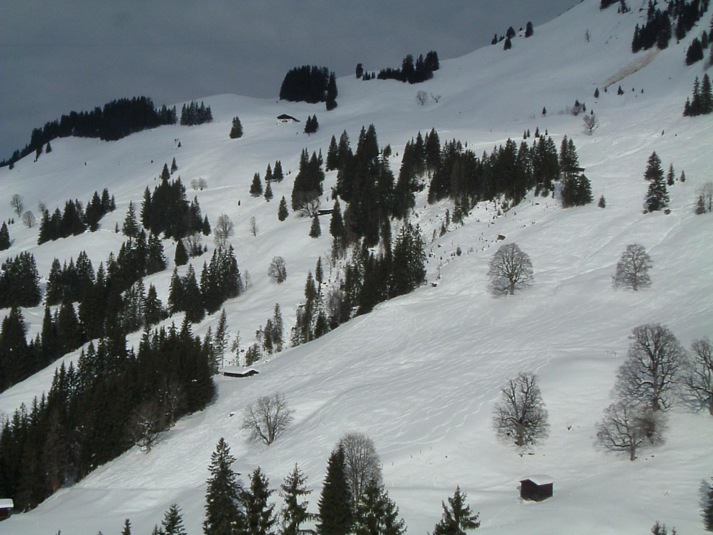Skiing in Kitzbuhel – What I'd do differently