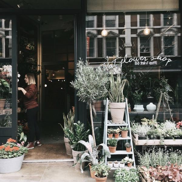 flower shop with green foliage outside