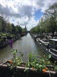 Flower bed view of Amsterdam Canal