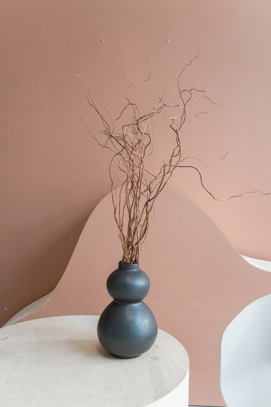 vase with dry plant on table