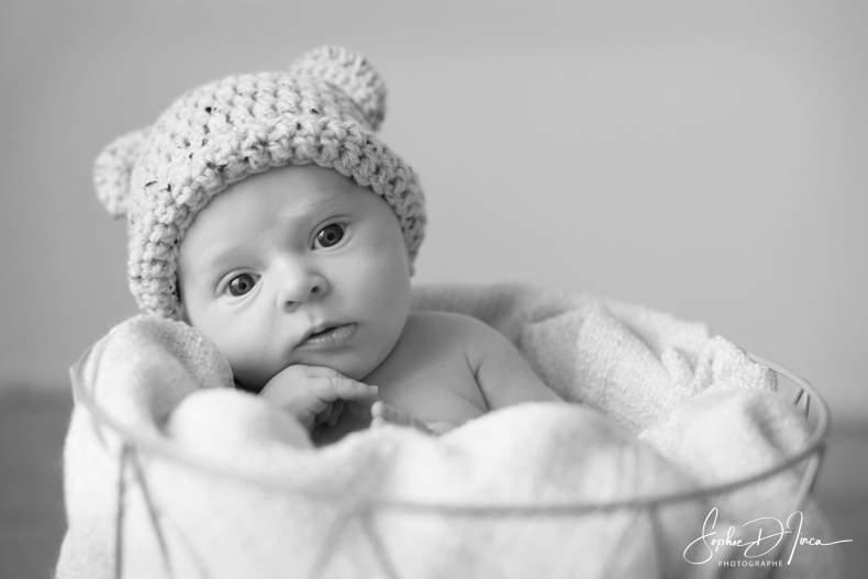 séance photos bébé dans panier Sophie d'inca photographe Malestroit Questembert