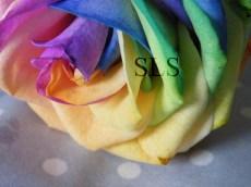 dscf0534-copy