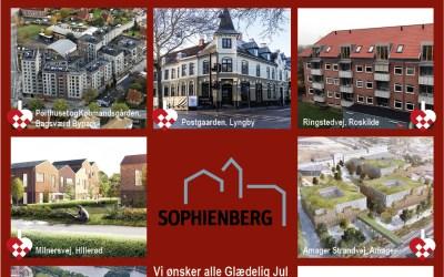Sophienberg ønsker Glædelig Jul & Lykkebringende 2020