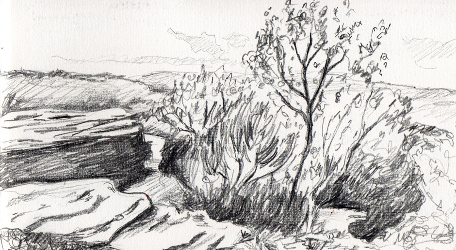 Drawing Texture Landscape Sketches For Beginners Pen Watercolour