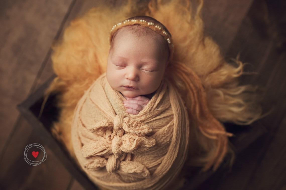 Newborn mini session yellow