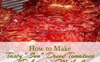 How To Make Tasty Sun Dried Tomatoes - Sophisticated Booty