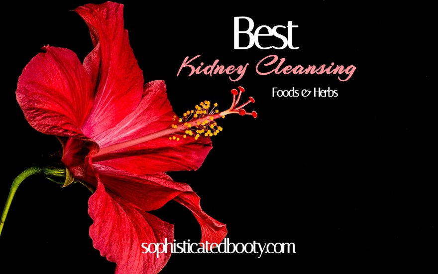 Best Kidney Cleansing Foods and Herbs