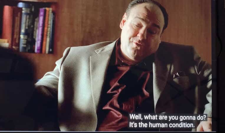 Tony Soprano is talking to Dr. Melfi about why every day is a gift.