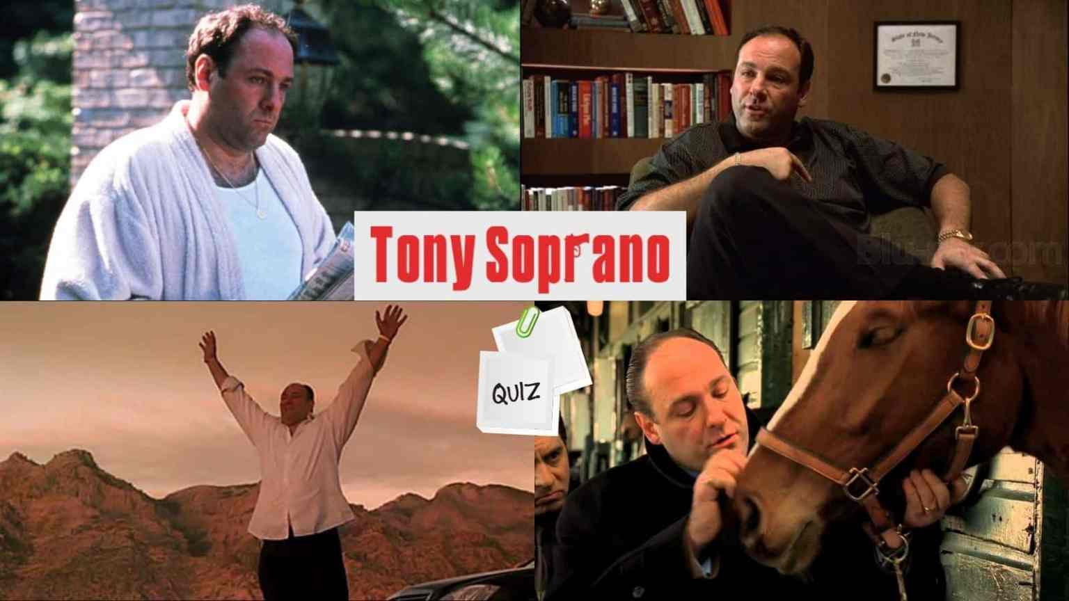 How Much Do You Know About Tony Soprano?