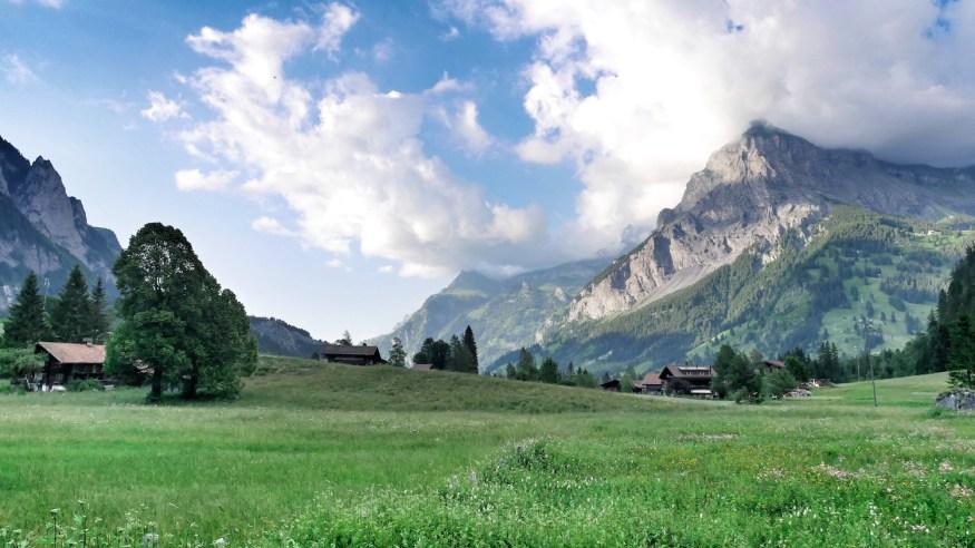 ricola_suisse_soprettylittlethings