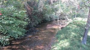 Left Fork Soque River