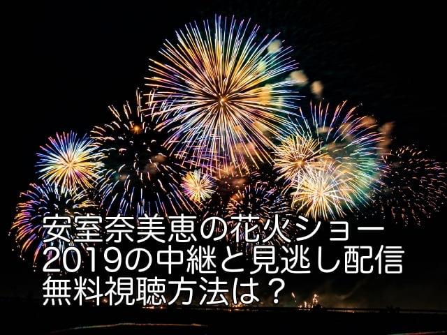 安室奈美恵 花火ショー 2019 中継