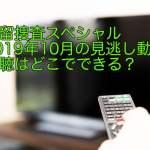 遺留捜査スペシャル2019年10月の見逃し動画視聴はどこでできる?