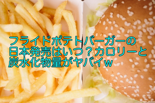 フライドポテトバーガー 日本 いつ
