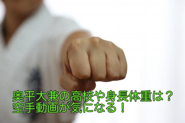 奥平大兼 高校
