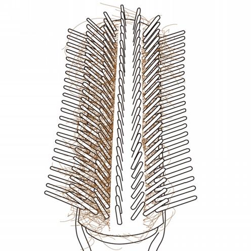 hairbrush04