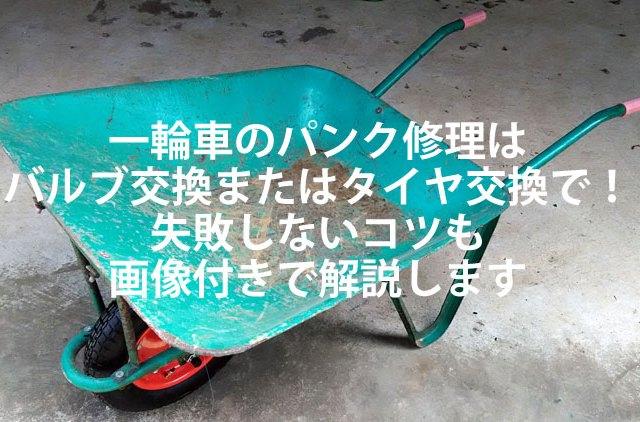 ichirinsha00